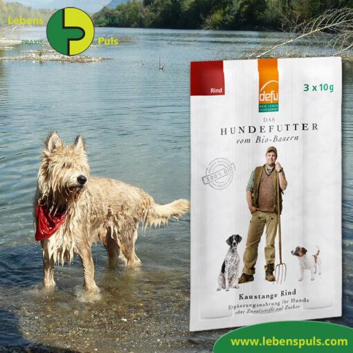 Defu Felderzeugnisse Bio Hundefutter Kaustange Rind