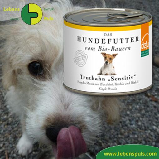 Defu Felderzeugnisse Bio Hundefutter Nassfutter Truthahn Sensitiv