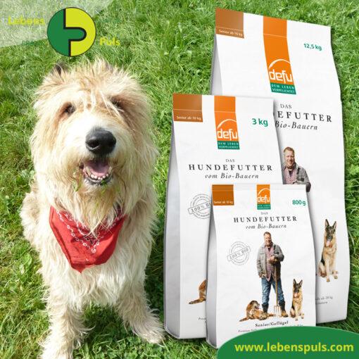 Defu Felderzeugnisse Bio Hundefutter Trockenfutter Senior Gefluegel