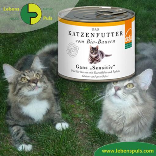 Defu Felderzeugnisse Bio Katzenfutter Nassfutter Gans
