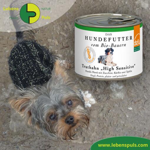 Defu Felderzeugnisse Bio Hundefutter Nassfutter Truthahn High Sensitiv Getreidefrei