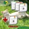 Defu Felderzeugnisse Bio Katzen Nassfutter 4 Sorten Aktion