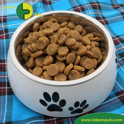 Defu Felderzeugnisse Bio Hundefutter Trockenfutter Junior Gefluegel Fressnapf