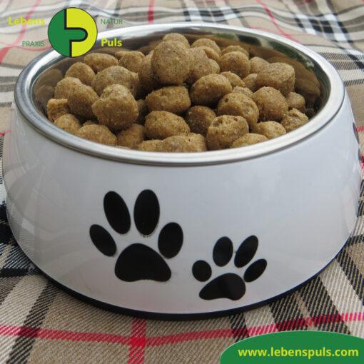 Defu Felderzeugnisse Bio Hundefutter Trockenfutter Senior Gefluegel Fressnapf