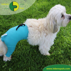 VetMedCare Tierbedarf Safety Pants Hund 2