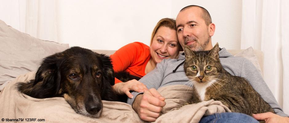 Tierernährung akuter Durchfall und Erbrechen Hund Katze Familie Beitrag LebensPuls