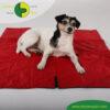 VetMedCare Tierbedarf Hundedecke Animal Pad1