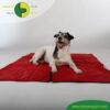VetMedCare Tierbedarf Hundedecke Animal Pad