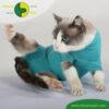 VetMedCare Tierbedarf Cat Body greenblue Bauch