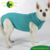 VetMedCare Tierbedarf Dog and Cat Body Huendin greenblue seitlich