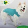 VetMedCare Tierbedarf Dog and Cat Body Ruede greenblue steh