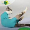 VetMedCare Tierbedarf Cat Body greenblue hinten