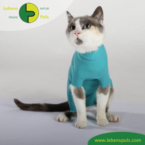 VetMedCare Tierbedarf Cat Body greenblue sitz