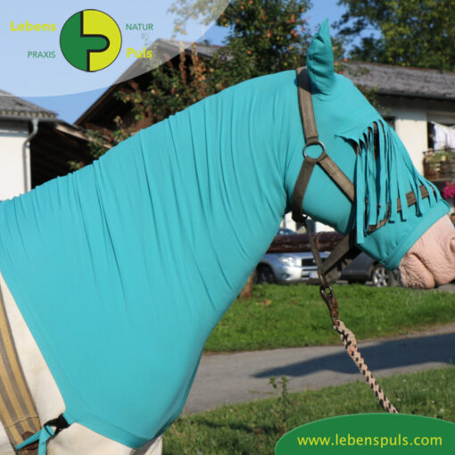 VetMedCare Tierbedarf Pferde Haube seitlich