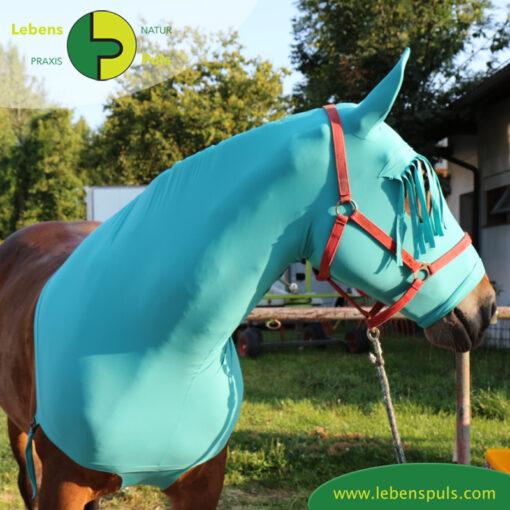 VetMedCare Tierbedarf Pferde Haube vorne3