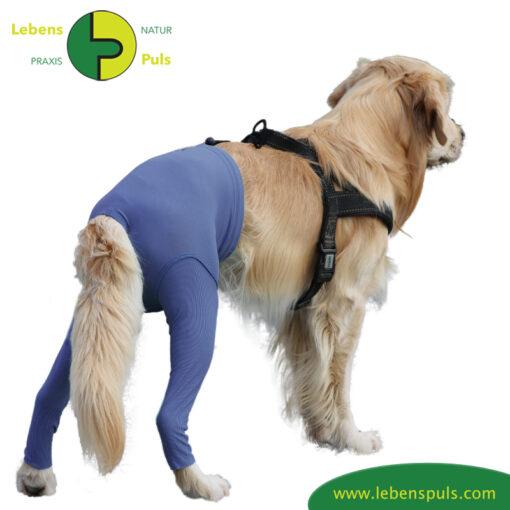 VetMedCare Tierbedarf Safety Pants indigoblue hinten