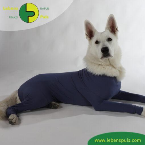 VetMedCare Tierbedarf Dog and Cat Body mit 4 Beinen Huendin indigoblue platz