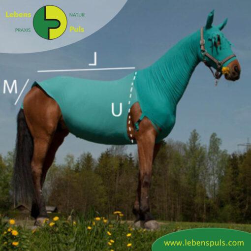 VetMedCare Tierbedarf Pferde Body