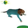 VetMedCare Tierbedarf Dog + Cat Body mit 4 Beinen und Zipper greenblue